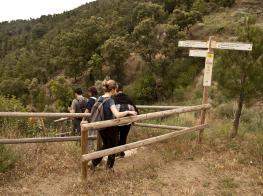 GR175 La Ruta del Cister, sector 1 Santes Creus - Poblet