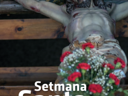 setsta_2019.png
