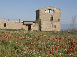torre_del_codina.jpg