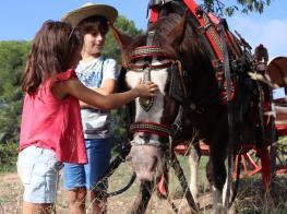 acariciando_caballo.jpg