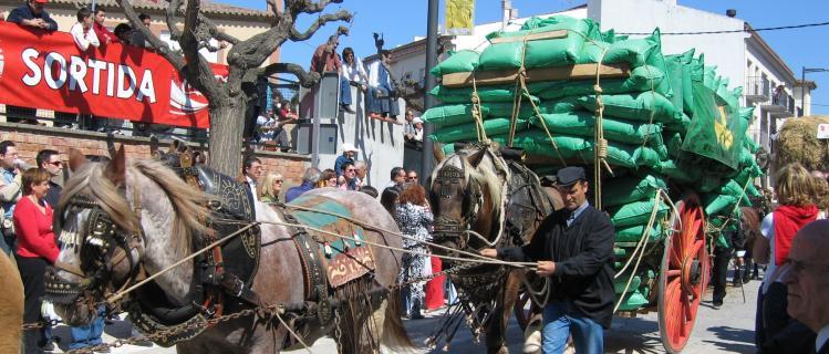 Festa dels Tres Tombs i Fira Medieval d'Anglesola