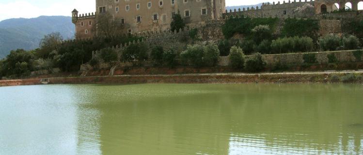 Castell de Riudabella  PT-000020/PT-000345
