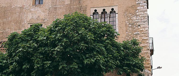 La casa de los Marqueses de Vallgornera