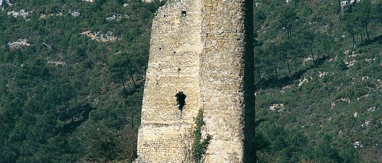 Castle of Santa Perpètua in Pontils