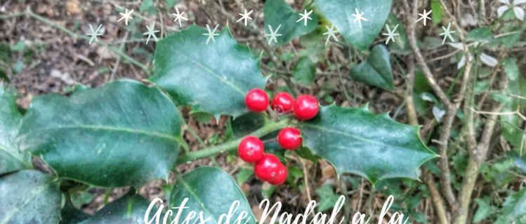Actes de Nadal a Solivella