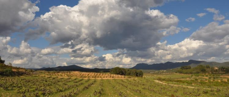 Exposició fotogràfica «Els paisatges trobats» al Casal de Vila-rodona