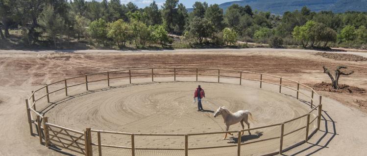 Centre d'Equitació Montblanc