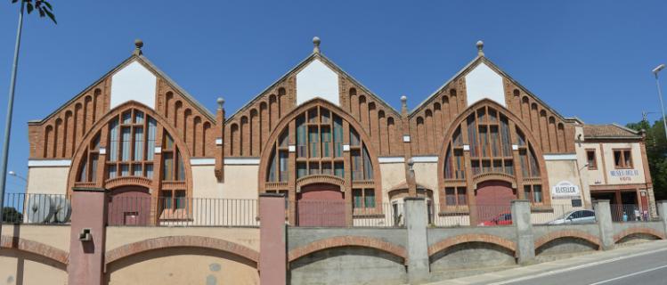 Visite guidée de la cave de style moderniste et du musée du vin de l'Espluga de Francolí