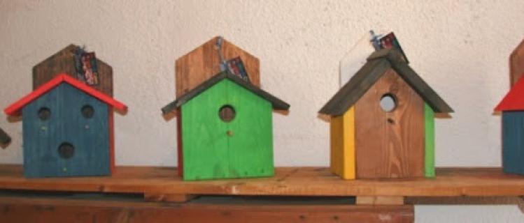 Workshop of nest boxes at  Vallbona de les Monges