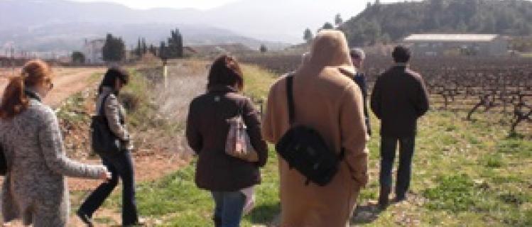 Enoturismo en familia en Mas Foraster de Montblanc