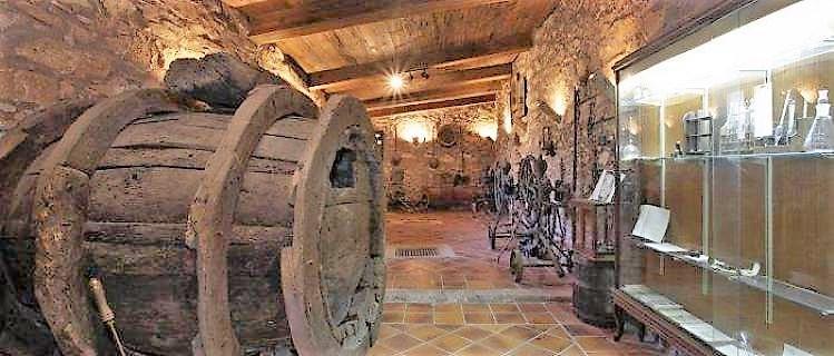 Museu de la vinya i el vi