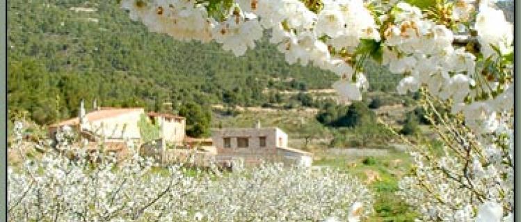 Restaurant Selmellà - Masia Can Figueres