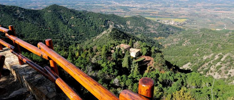 The Prades Mountains and the forest of Poblet
