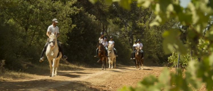 Rutes a cavall a Montblanc