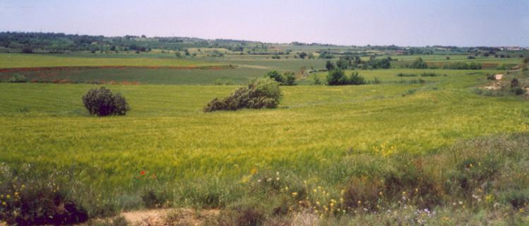 La Ribera del Sió PR-C-56