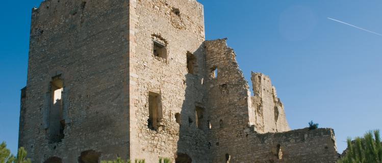 Castillo de Vallmoll